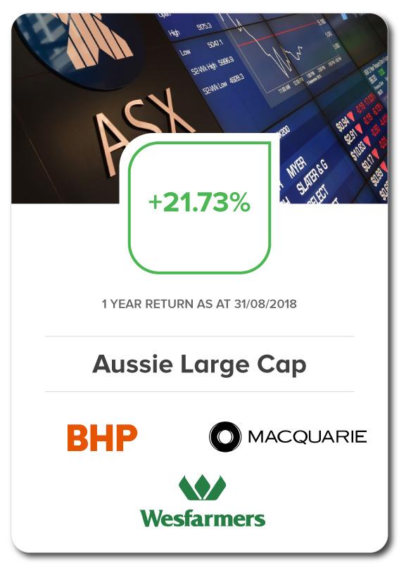 Aussie-Large-Cap-Investment-Portfolio-Vue